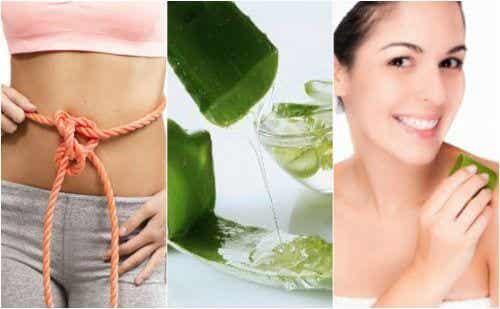 Il gel di aloe vera: 9 proprietà medicinali