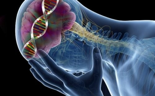 Bassi livelli di serotonina: 9 sorprendenti effetti