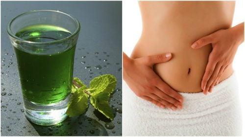 Acqua verde per disintossicare il corpo in tre giorni