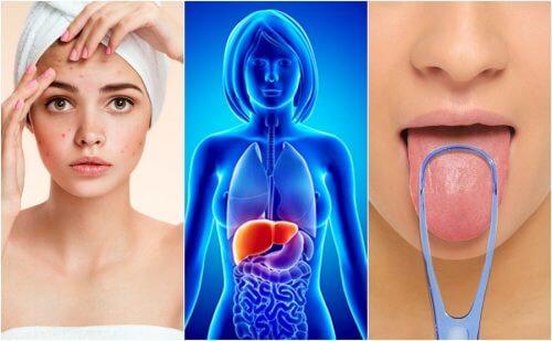 Fegato pieno di tossine: 7 campanelli d'allarme