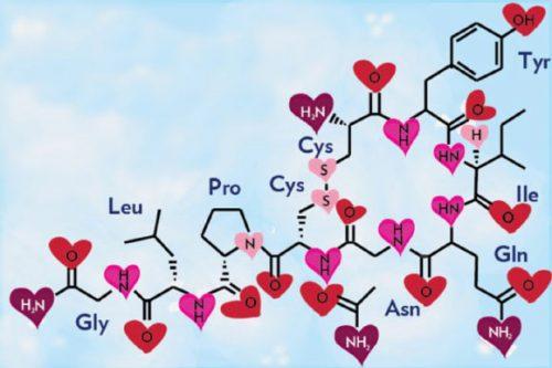 formula chimica lato oscuro dell'ossitocina