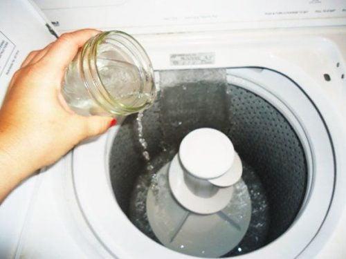 3 soluzioni ecologiche per eliminare la muffa dalla lavatrice ...