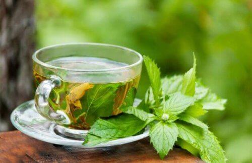 Tè verde per combattere la stitichezza