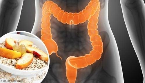 Cosa mangiare in caso di sindrome del colon irritabile
