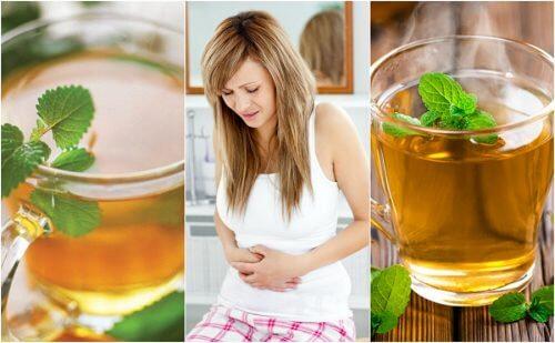 I migliori infusi per calmare i sintomi del colon irritabile