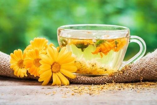 Infuso di calendula e fiori
