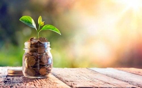 Vaso con soldi da cui nasce una pianta