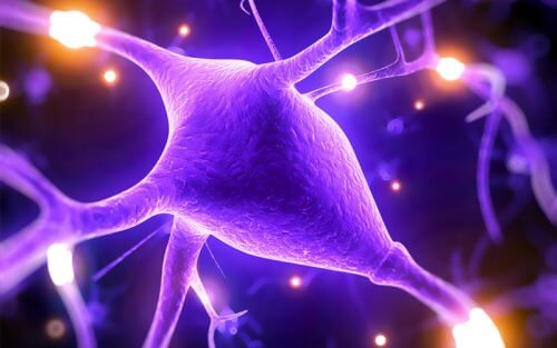 5 motivi per cui il magnesio migliora le abilità cognitive