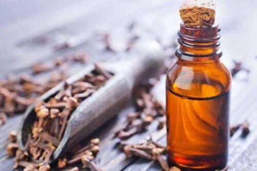 olio essenziale di chiodo di garofano