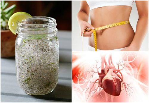 Semi di chia e succo di limone: gli effetti sull'organismo