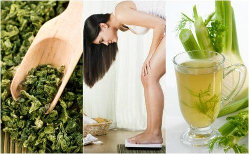 5 piante medicinali con cui perdere peso facilmente