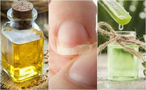 Riparare le unghie spezzate con 5 trattamenti naturali