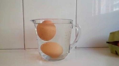 Riconoscere le uova andate a male mettendole in acqua