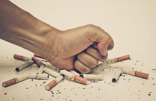 Ragazzo distrugge sigarette