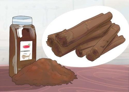 Cannella e le sue proprietà: spezia afrodisiaca e molto altro