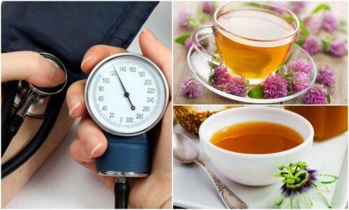 Le 6 migliori piante per abbassare la pressione sanguigna