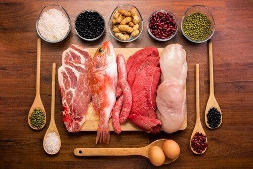 Proteine e carboidrati.