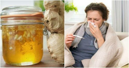 Combattere il raffreddore con uno sciroppo di miele e zenzero