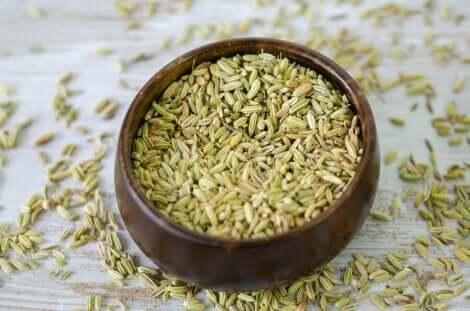 Combattere la stipsi con i semi di finocchio