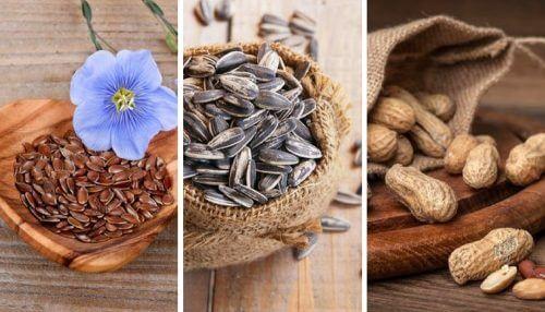5 semi commestibili e le loro incredibili proprietà