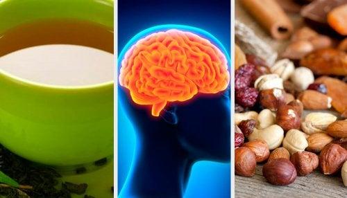 Aumentare la memoria e l'attività cognitiva