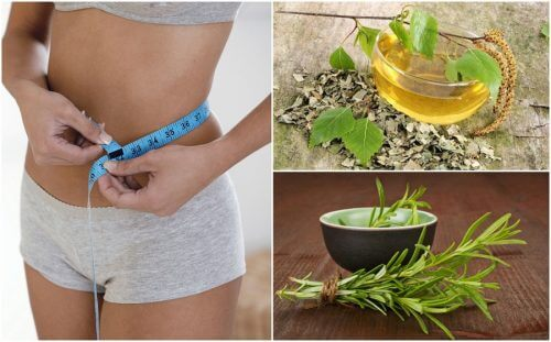 Dimagrire in modo sano con 8 erbe