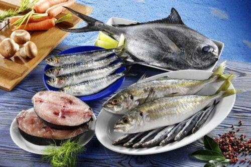 Il pesce azzurro fa bene alla concentrazione