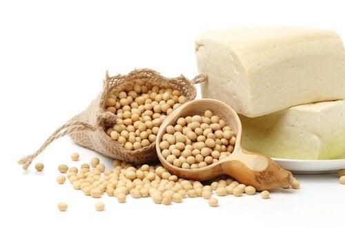 Soia contenuto proteico