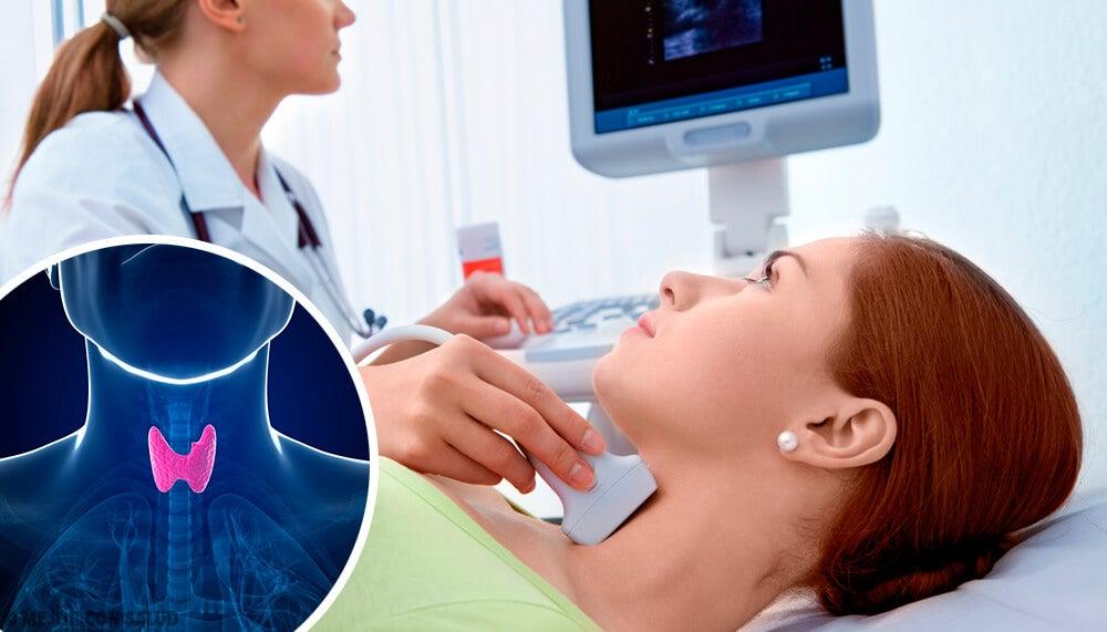 Qual è la funzione della tiroide?