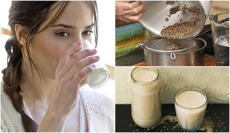 Latte di scagliola: preparazione e benefici