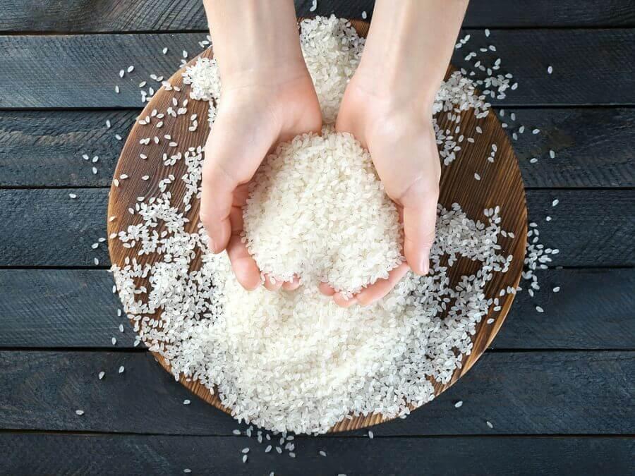 Mani che raccolgono il riso