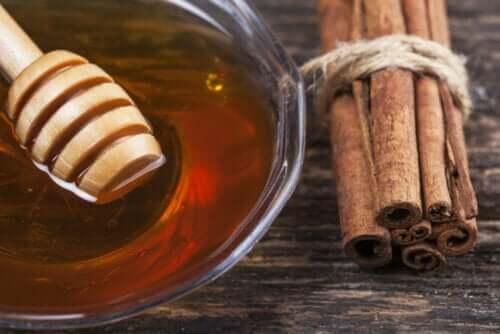 Miscela di miele e cannella: 8 benefici medicinali