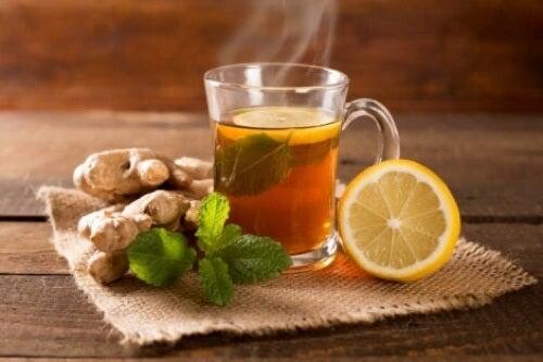 Infuso tè verde, zenzero e limone