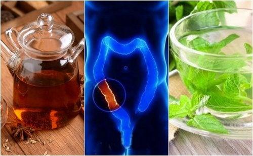 Ripulire il colon con 5 infusi naturali