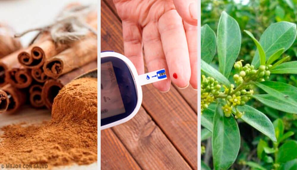 Tenere sotto controllo il diabete: piante officinali