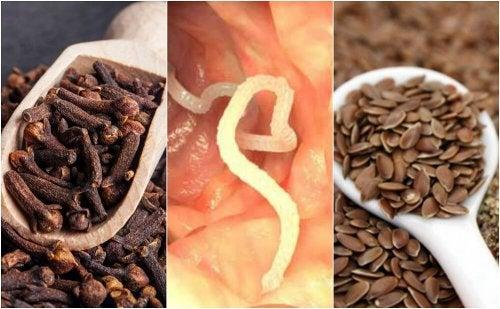 Eliminare i parassiti con semi di lino e chiodi di garofano