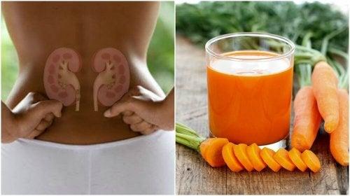 Depurare i reni con un frullato di carote e cetriolo