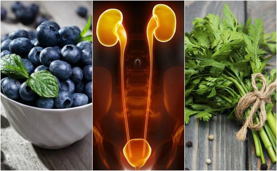 Proteggere reni e vescica: 7 alimenti adatti