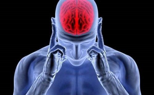 Adrenalina: ormone di euforia, stress e mal di testa