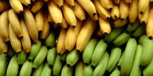 Platano e banana: 3 differenze nutrizionali