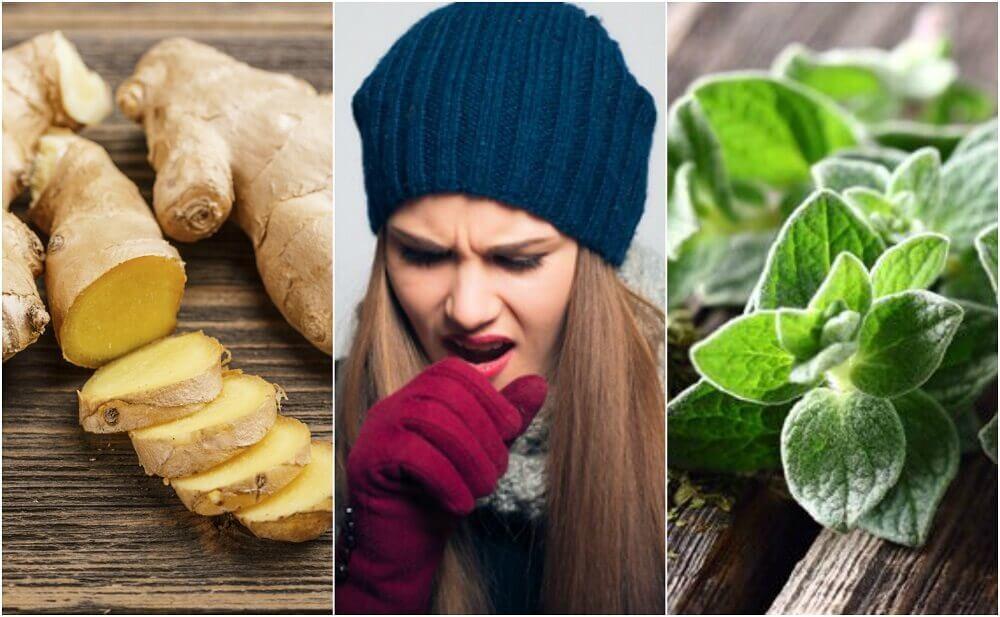 Espellere il muco: rimedi a base di erbe medicinali