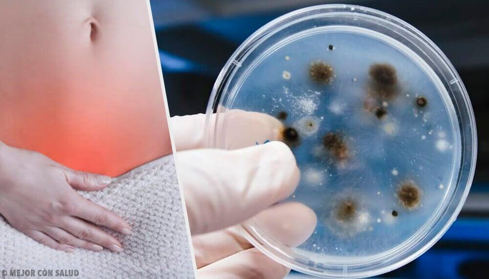 Infezioni alle parti intime: come riconoscere tipi e cause