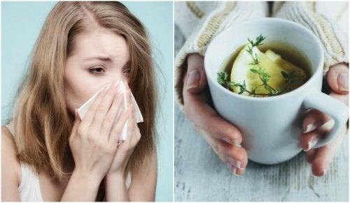 Tosse e raffreddore: tisana al timo, limone e miele