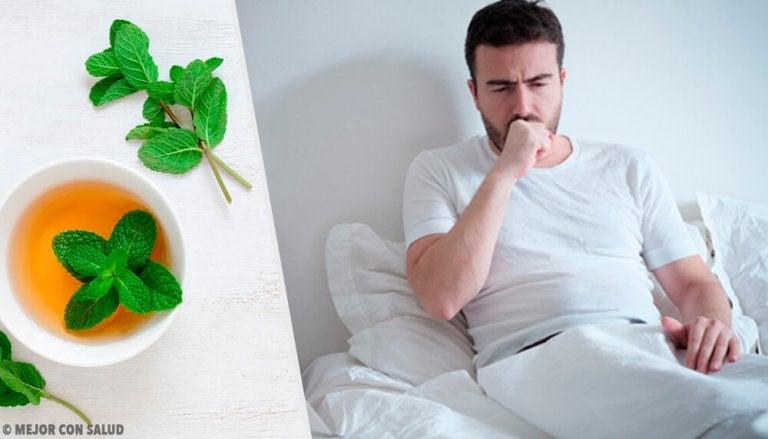 Infusi per calmare la tosse: i migliori 5