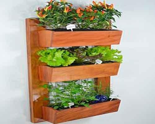 Realizzare un giardino interno con piante appese
