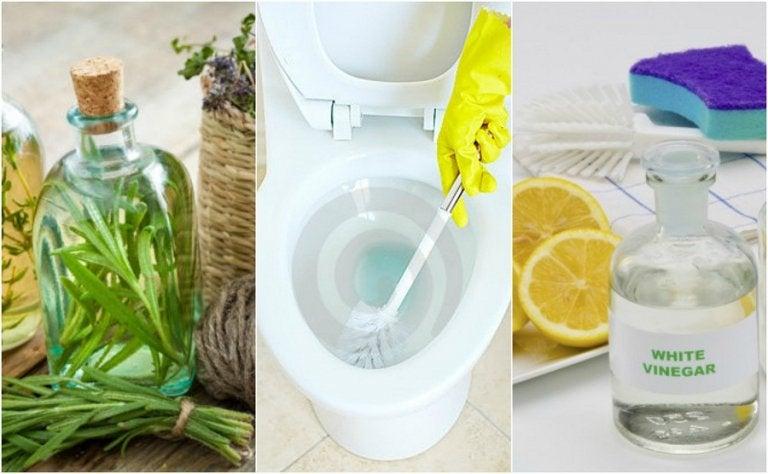 Disinfettare il bagno: soluzioni ecologiche