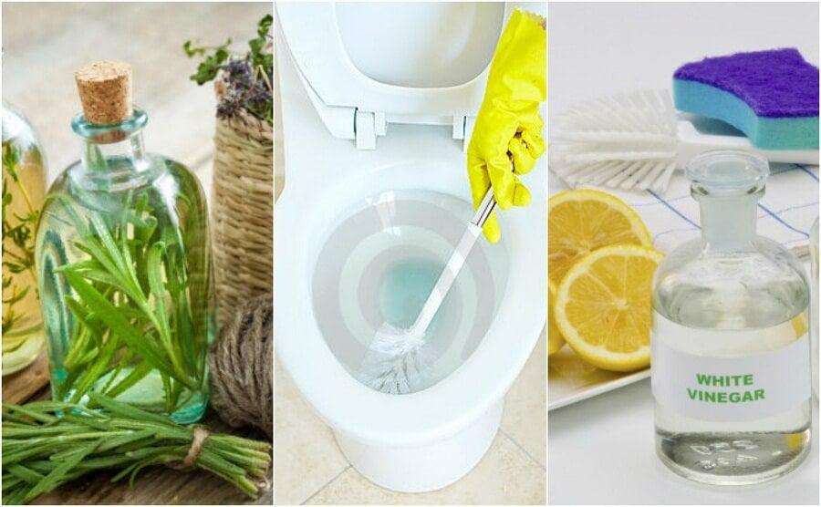 Disinfettante Bagno Naturale : Disinfettare il bagno soluzioni ecologiche vivere più sani