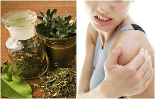 Calmare i dolori articolari: tintura alle erbe