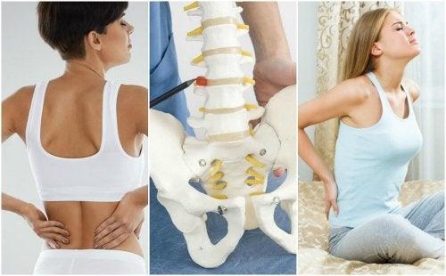bruciore al dolore nella zona pelvica e nella parte bassa della schiena
