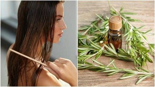 Rosmarino per i capelli: 5 benefici